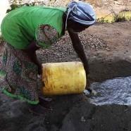 Kenya Semi-Arid Livestock Enhancement Support
